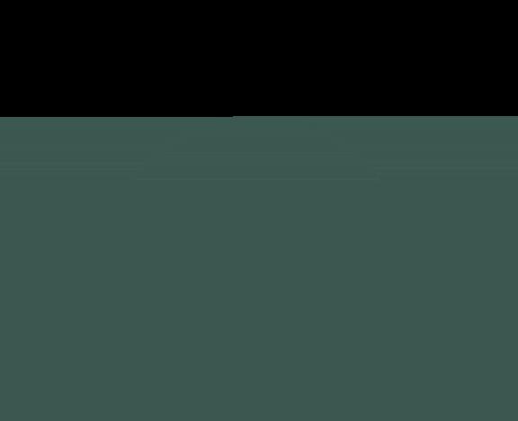 Frontbridge