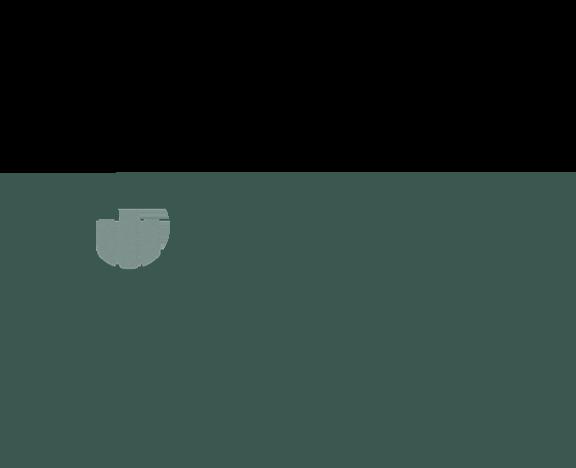 Bizible